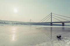Winter river (nebojsa.bobic) Tags: bridge winter white snow cold tree ice weather river landscape outside frozen outdoor pigeons scenic beautyinnature