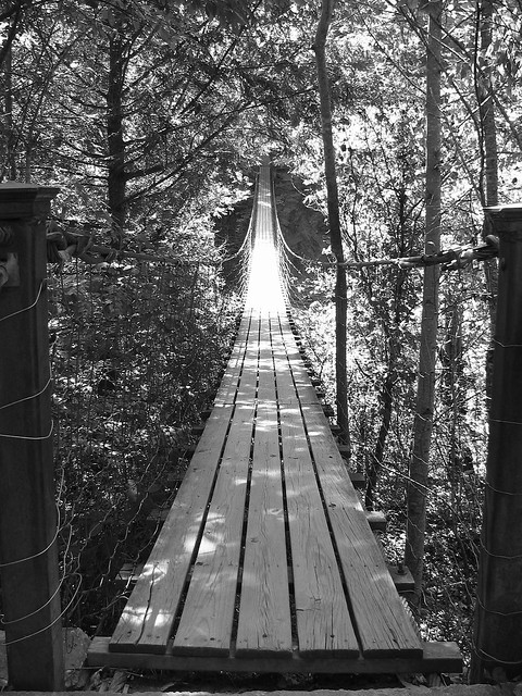 Fall Creek Falls swinging bridge