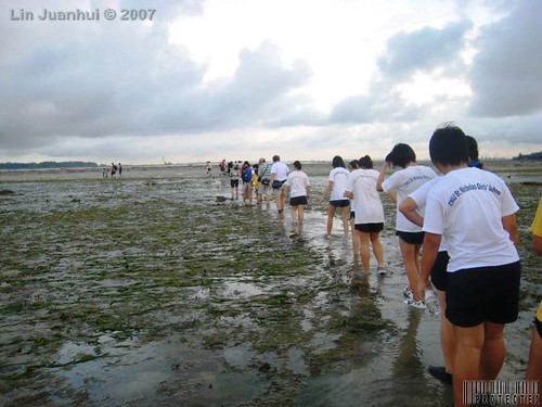 IMG_0046 crossing the seagrass meadow
