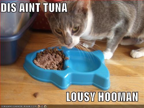 dis ain't tuna