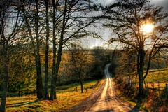 This Country Road ( D L Ennis) Tags: road trees light foothills fence virginia country charm fields blueridgemountains rolling courses downhome amherstcounty anawesomeshot impressedbeauty goldenphotographer dlennis diamondclassphotographer thiscountryroad