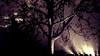 ... E a causa di tal fatti il protagonista finì là dove si aspettava (pierofix) Tags: city shadow sky italy black tree castle leaves skyline foglie night clouds lights italia nuvole centre ombra centro violet surreal style explore cielo cupola dome terror luci 169 albero tronco viola castello renzopiano stile nero notte città friuli spotlights corteccia orizzonte illuminazione udine orrore tetro surreale minaccioso faretti raccapricciante tempioossario udcittà