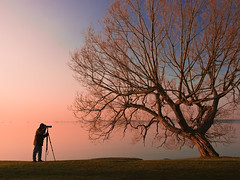 Photographer (jj8rock) Tags: camera morning lake selfportrait ontario tree sunrise interestingness spring photographer explore kingston flickrplatinum diamondclassphotographer flickrdiamond awardflickrbest jj8rock