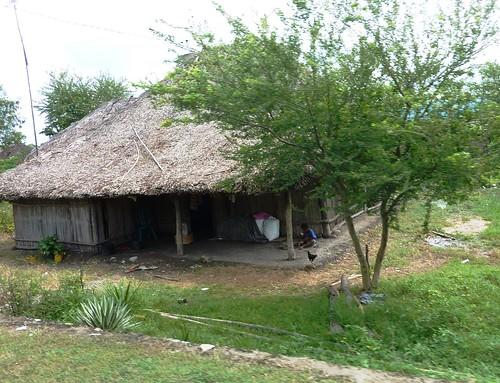Timor Ouest-Kupang-Kefa (22)
