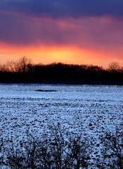 Amore Borealis (John M. Kennedy) Tags: winter sunset sky field landscape scenery supershot topshots colorphotoaward flickrdiamond thesuperbmasterpiece coth5 theoriginalgoldseal
