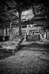 Interupted (Tomas Pivovarnik) Tags: wood bw plant nature monochrome architecture stairs mix ruins factory republic czech urbandecay tint urbanexploration hdr urbex republika esk