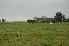 pasture on this side of the town limits (trekamerikalover) Tags: hometown dutchhouses autumnfolliage