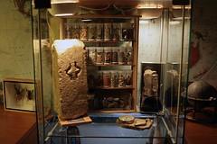 Shelf 1 (The Hike Guy) Tags: travel diy rocks dracula ephemera geology relics ledlighting