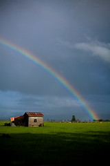 That Pot of Gold is Just Behind Those Cows (norbography) Tags: sky green grass clouds rainbow cows shed vote toddnorbury wpmvote