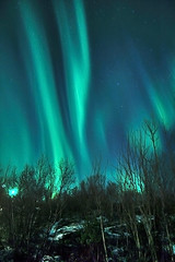 Nordlys (Per Ivar Somby) Tags: spectacular hdr northernlights auroraborealis troms nordlys northernlight diamondclassphotographer