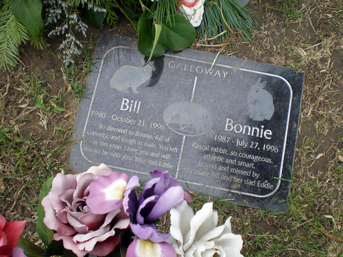 Bill and Bonnie Galloway