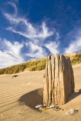 Spurn Head beach (darryljameshunt) Tags: beach nikon yorkshire spurnhead d80 englandengland nikond80