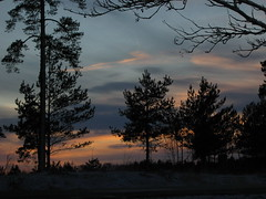 sun, fun and silhouettes (e_digitalis) Tags: winter snow canon landscape vinter frost sweden nieve schweden el powershot invierno a80 2008 suede suecia naturesfinest canonpowershota80 straightfromthecamera ineedsun diamondclassphotographer flickrdiamond brillianteyejewel edigitalis allrightsreserved2008eledigitalis somenacreouscloudswoulddotoo