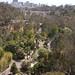San Diego Zoo 081