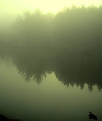 A glimpse of eternity............... (LaTur) Tags: morning mist reflection fog virginia dc spring m1 dcist sterling eternity naturesfinest photographyrocks flickrelite theperfectphotographer goldstaraward we3dc welovedc fotoweek