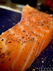 Salmon Zoom