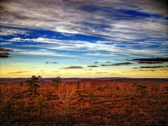 Barrens (Nicholas_T) Tags: sky clouds landscape spring lowlight dusk hiking pennsylvania plateau creativecommons poconos barrens appalachianmountains altocumulus pinehill luzernecounty lackawannacounty easternnorthamericanature lackawannastateforest pinehillvista