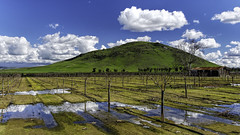 After the Storm (Explored 2/24/17) (punahou77) Tags: reedley california clouds centralvalley vineyard mountain landscape farm reflection nature nikond500 punahou77