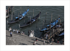 The romance of Venice (andyrousephotography) Tags: venice sanmarco gondolas wedding photos photographer bride groom parents romance romantic dreamy view zoom vantage campanile andyrouse canon eos 5d mkiii