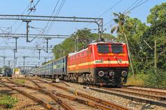 Netravati express (Akhil Sanjeev) Tags: rail railroad station wdm3a railfanning railway southernrailway trainspotting train vehicle outdoor locomotive electric erode ed alappuzha alleppey