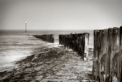 nightmares by the sea (-justk-) Tags: sea copyright seagulls beach netherlands cadzand jeffbuckley blackwhitephotos allmyimagesarecopyrightedallrightsreserveddonotusecopyandeditmyimageswithoutmypermission