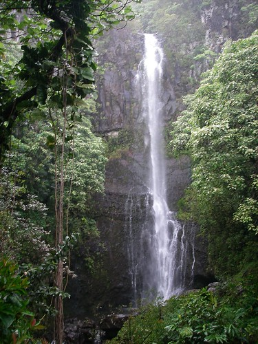 A waterfall off the Road to Hana