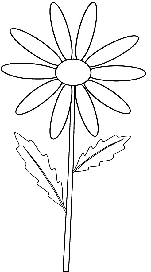 Yellow daisy on stem  outline clip art sketch to colour, lge 15 cm