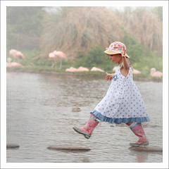 Pretty flamingo ~~ (izzy's-photos) Tags: girl hat children dress steppingstones slimbridge pinkwellies bestportraitsaoi mygearandme mygearandmepremium mygearandmebronze mygearandmesilver blinkagain bestofblinkwinners