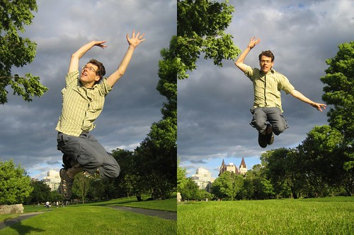 flying bri diptych