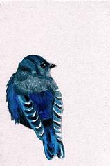 Bluebird oil on canvas digitally enhanced