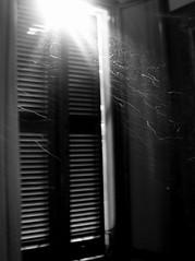 PERCHE' ANCHE L'ARIA  HA I SUOI SEGRETI (seicomenoi) Tags: sun window smog finestra bologna dust sole polvere raggio