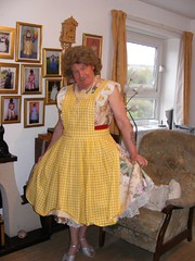 the 50's housewife (jackierenton) Tags: feminine apron gingham pinafore aprons pinny schort crosstied schorten yellowapron wraparoundapron bibbedapron