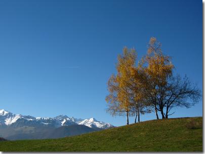 Colline bovesane in autunno