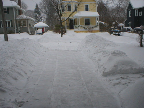 Driveway cleared, for now.