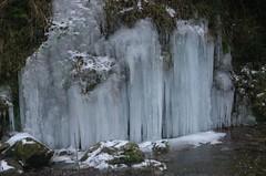 22-12-2007 037 Torrent de la Boixeda (visol) Tags: winter ice hiver invierno gel hielo glace hivern