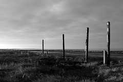 (vauka) Tags: light sea sky bw black beach nature post pole mighty 32 piles erect wesermarsch 6959 sehestedt monochromia
