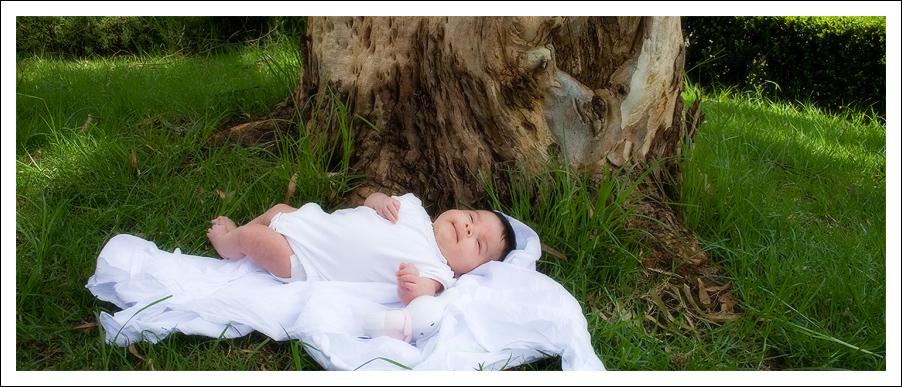 Dryad Baby