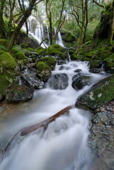 Cataract Falls (Aaron Siladi) Tags: california winter green water waterfall rocks marin mttam dxo storms mossy sigma1020mm cataractfalls