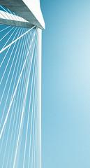 Form (Erik Holmberg) Tags: bridge sc beauty suspension south mountpleasant southcarolina bridges mount charleston carolina form 1022mm pleasant ravenel ravenelbridge mountp