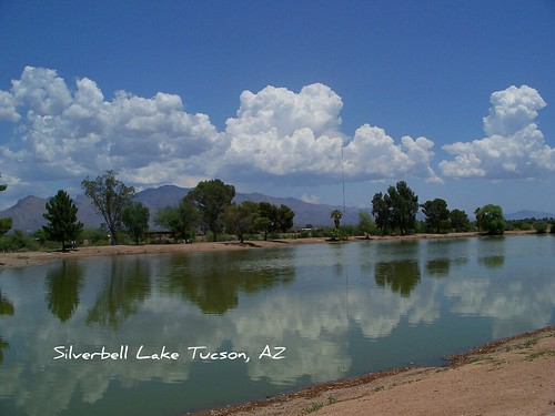 Arizona Urban Lakes - Silverbell
