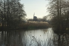 de molen (Ren Mouton) Tags: park holland reed nature netherlands windmill amsterdam natuur riet molen waterland wandeling 1580 denilp ttwiske 10februari2008 achtkantigebovenbinnenkruier twiskemolen basingerhorn