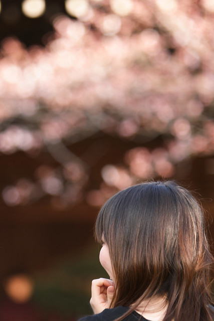 春色の鑑賞会