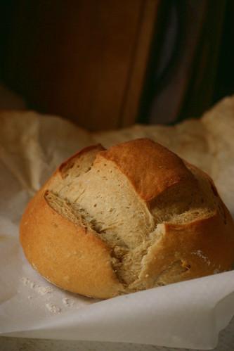 Pan tipo Altamura