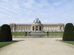 Royal Museum for Central Africa - Tervuren - Belgium (Nina Pope) Tags: brussels museum belgium taxidermy tervuren congo royalmuseumforcentralafrica