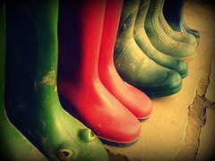 The Minski family's wellies (Her life in pictures) Tags: red green mud frog wellies picnik