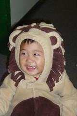 Heh heh, I'm a Lion