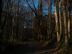 Baldpate-101_8938 (Carol Warfel Miller) Tags: park newjersey nj mercercounty baldpate