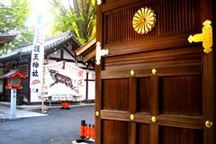 boar door (msdonnalee) Tags: door japan architecture kyoto shrine  porta   boar tr  donnacleveland photosbydonnacleveland