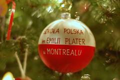 Polish School Ornament