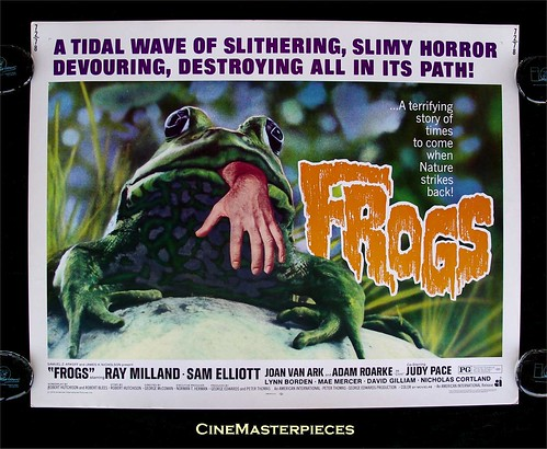 frogs!!!